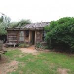 Back of homestead